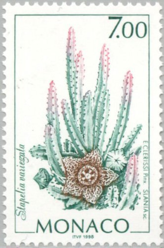 Succulents on Stamps: Orbea variegata, Monaco, 1998